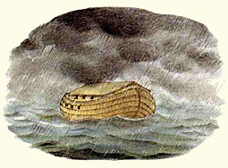 Drawing of the Ark by Lucile Butel