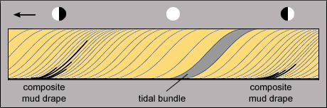 Sequence of sigmoidal-shaped tidal bundles